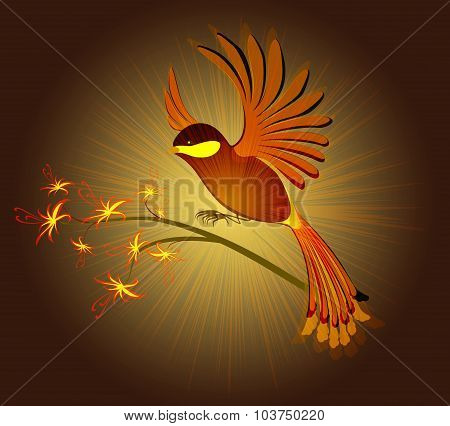 Bird of Paradise with flowers on a dark background. EPS10 vector illustration