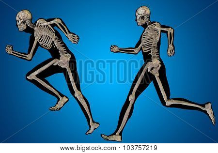 Concept or conceptual 3D human man or male skeleton anatomy transparent body over blue gradient background
