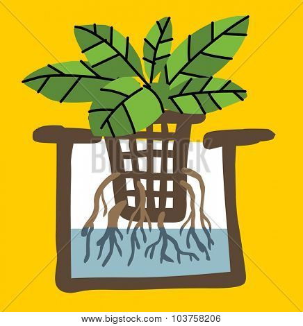 hydroponics agriculture plant. Vector illustration Flat