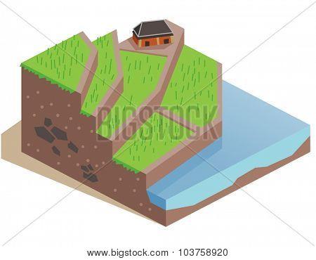 Terrace Farming land. Isometric vector illustration