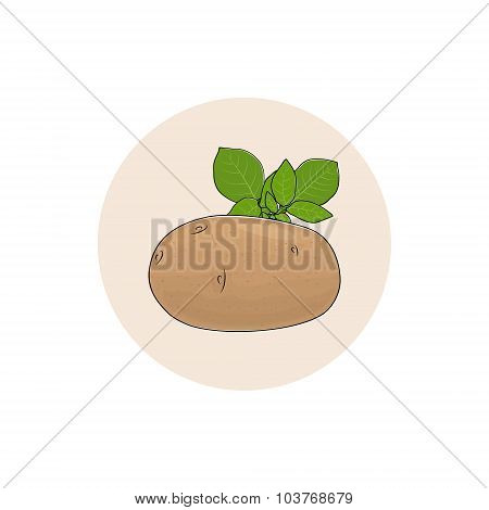 Icon Potato Vegetable