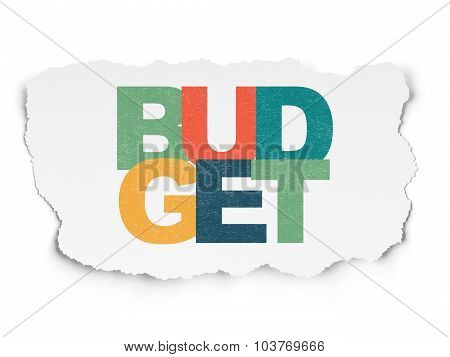 Currency concept: Budget on Torn Paper background