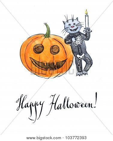Cat Wearing A Skeleton Costume