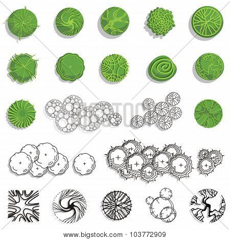 Trees - Top View. Easy To Use In Your Landscape Design Projects.
