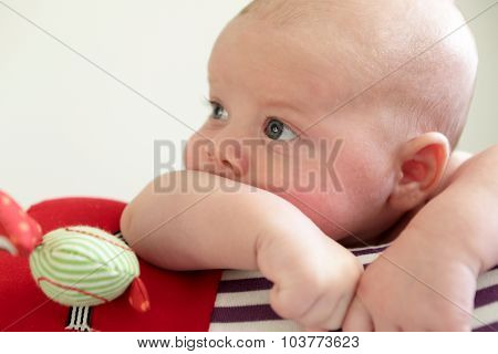 Pensive Newborn Boy Lying On A Crawling Roll