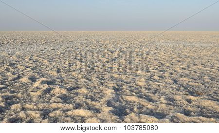 India, Salt Desert