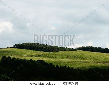 rolling hills and wooded forest lyme park cheshire