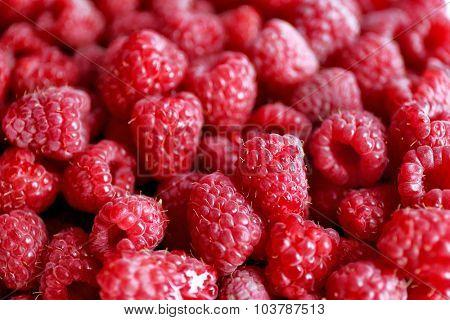 Heap of sweet red raspberries close up
