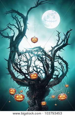 Mystic Tree With Pumpkins On Web