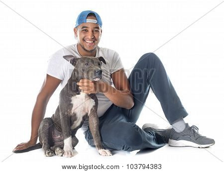 Man And Puppy American Staffordshire Terrier