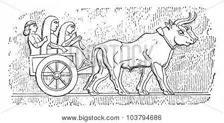 Assyrian cart, vintage engraved illustration.