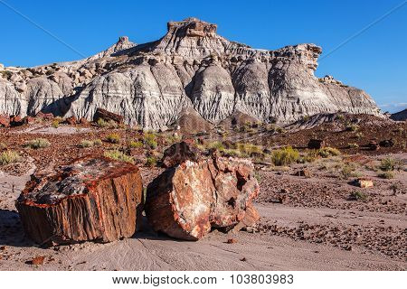 Painted Desert Badlands Petrified Forest