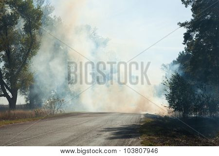 Smoke from the fire at the road