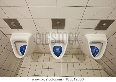Many urinals in a toilet
