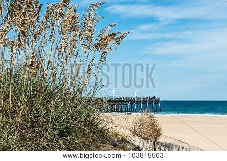 Beach Grass and Dunes with Fishing Pier at Sandbridge