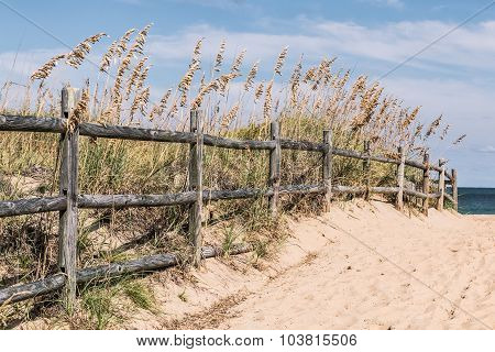 Fence on Pathway to Beach with Grass and Dunes