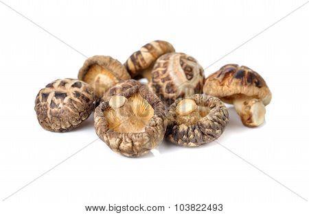 Dried Shiitake Mushrooms On White Background