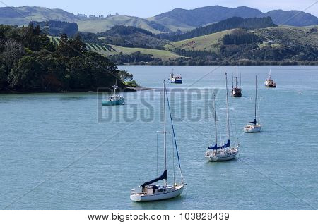 Mangonui Harbor In Northland New Zealand