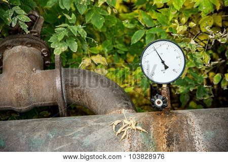 Pressure Sensor Hot Water Against The Leaf Outdoors