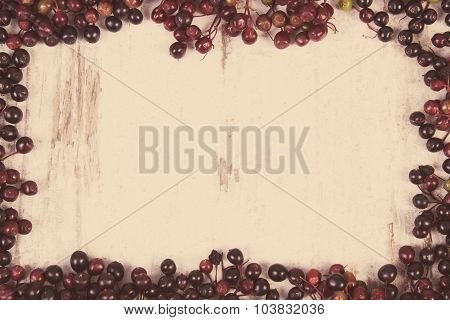 Vintage Photo, Frame Of Autumn Fresh Elderberry And Copy Space For Text