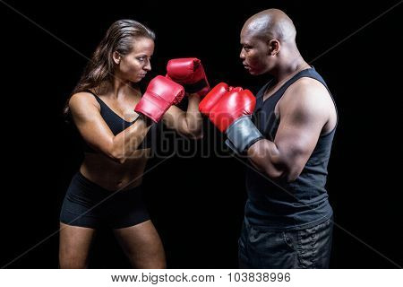 Male and female boxer with fighting stance against black background