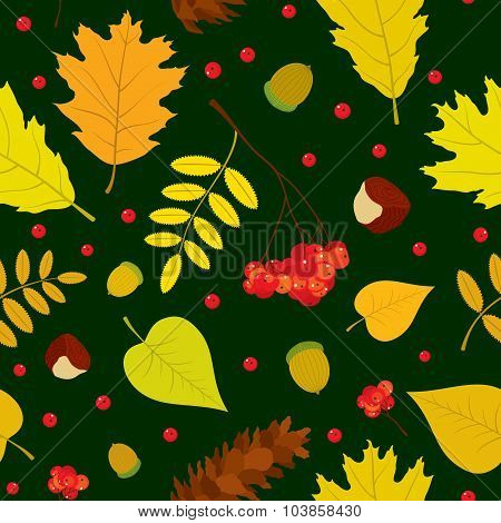Autumn forest seamless pattern with rowan berries, leaves, acorn, chestnut, pine cone. Vector set. D