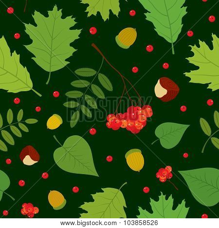 Forest seamless pattern with rowan berries, leaves, acorn, chestnut. Vector set. Dark green backgrou