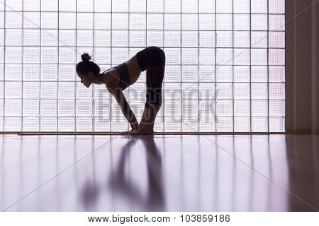 Young woman practicing in a yoga studio. This pose is called half lift.