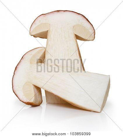 Boletus Edulis mushrooms isolated on white background.