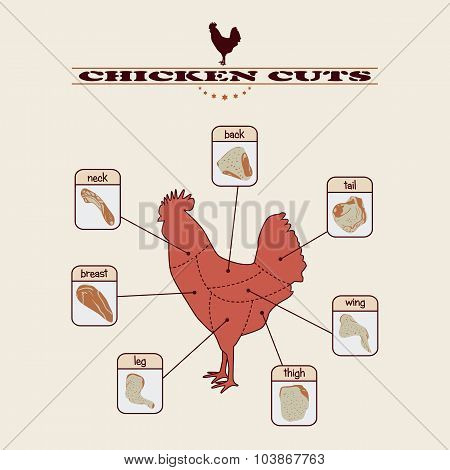 Chicken_cuts