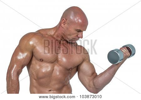 Bodybuilder concentrating while lifting dumbbells against white background
