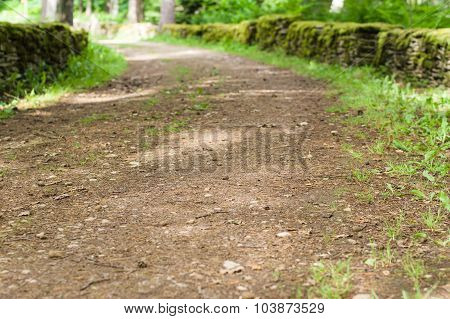 Countryside Pathway Between Stone Fences