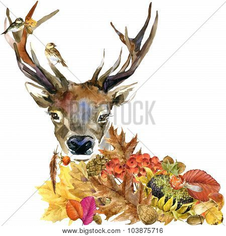 Forest animal roe deer Autumn nature colorful leaves background , fruit, berries, mushrooms, yellow
