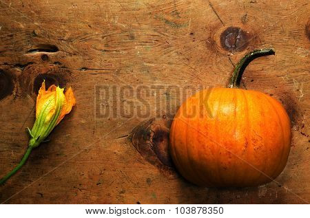 Vintage wood table with pumpkin and blossom