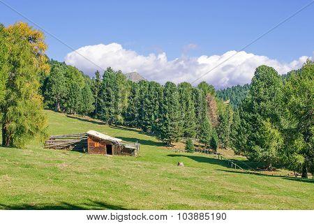 Alp Dolomites