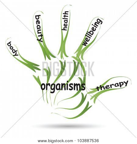 Vector conceptual abstract health or sport word cloud man hand print on white background