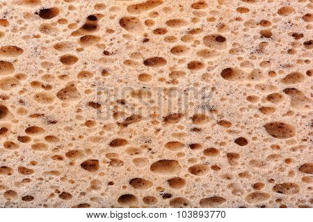 Sponge texture closeup, background