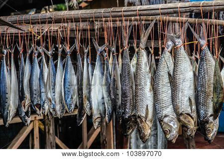 Hanging Fish Drying Naturally On The Sun - Malaysia