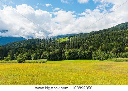 Alpen Landscape