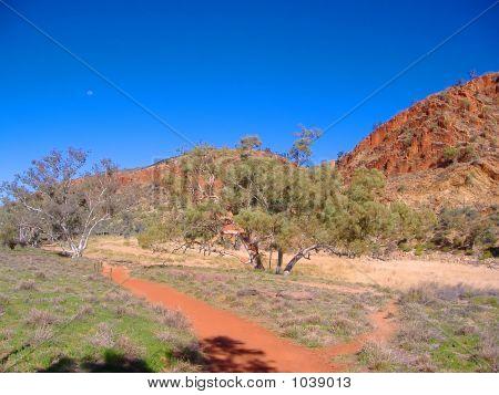 Australia Outback 132