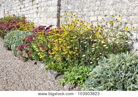Autumn colourful flowers in a cottage garden growing against grey stone wall by gravel walking path