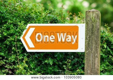 Direction Arrow, Sign To One Way In Orange Color