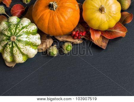 Autumn Background - Pumpkins, Acorns, Leaves And Berries