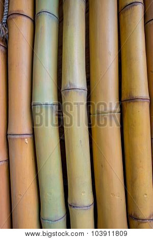 Background made of bamboo branches