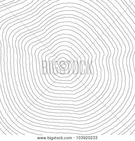 Wood Rings Background Texture