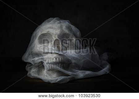 Still Life Photography With Human Skull On Wood Table, Fine Art Photography With The Skull Bride Wit