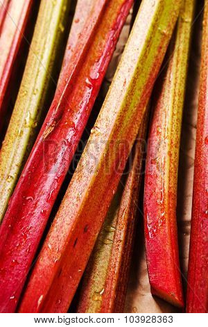 Food. Delicious garden rhubarb on the table