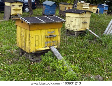Yellow And Blue Bee Hives.
