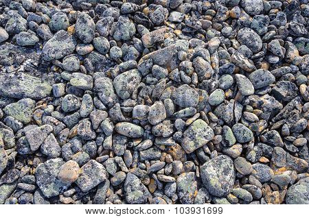 Texture Of Mottled Round Pebbles In Tundra