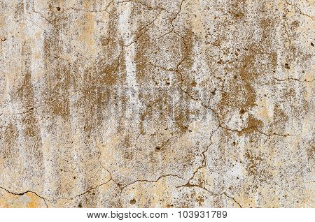 Old Weathered Plaster White Wall
